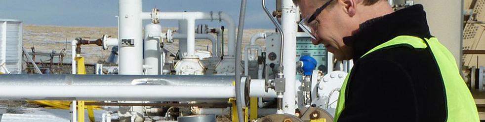 Chemische industrie:  gassen voor veilig bedrijf en als grondstof voor de industrie